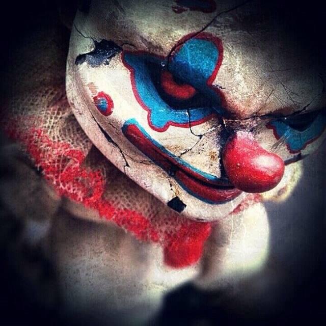 Jump Jumper Ant muttpop clown close up