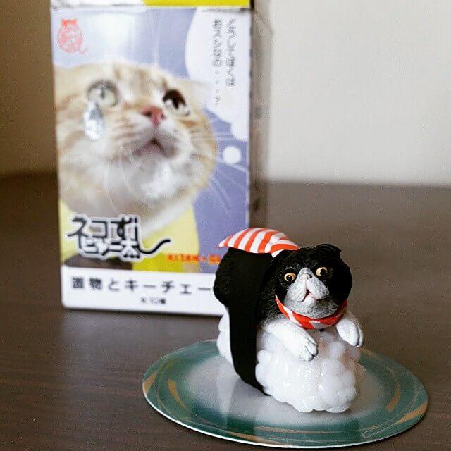Sushi Cats (Neko-Sushi) by Tange Nakimushi