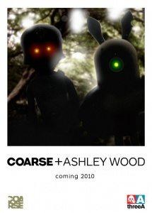 coarse3a_coming_2010