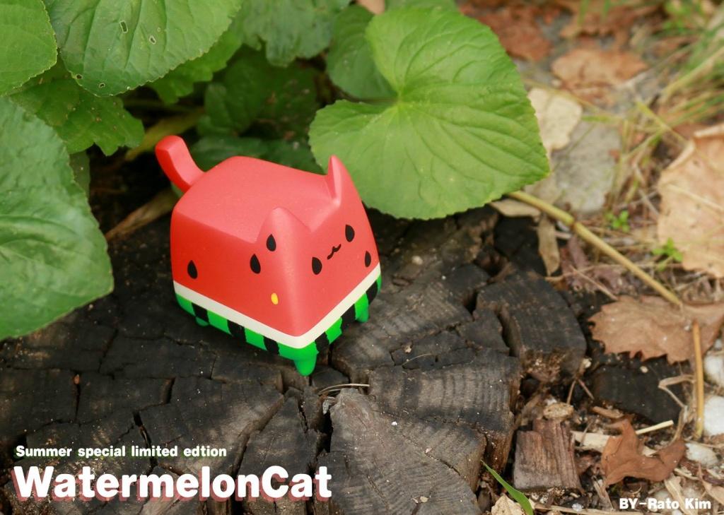 WatermelonCat By Rato Kim breadcat toy outside