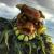 webecomemonsters-alastor-featured