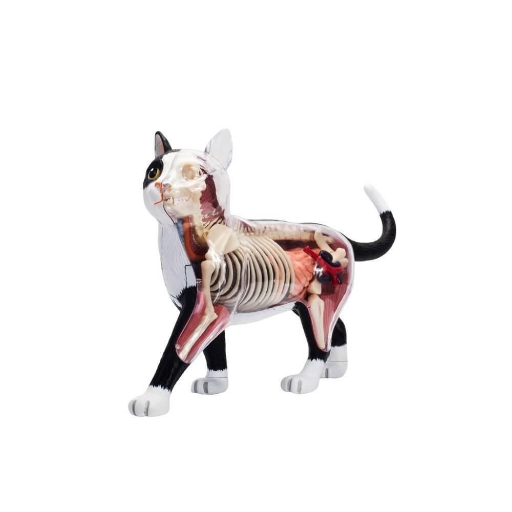 socks-dissected-cat-mighty-jaxx