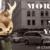 morris-in-new-york