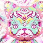 thomas-han-shroomie-superjanky-superplastic-featured